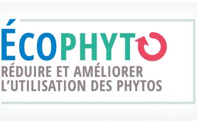 Reducir a la mitad el uso de fitosanitarios en 2025, objetivo de Francia