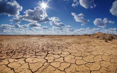 El clima nos cambia las plagas