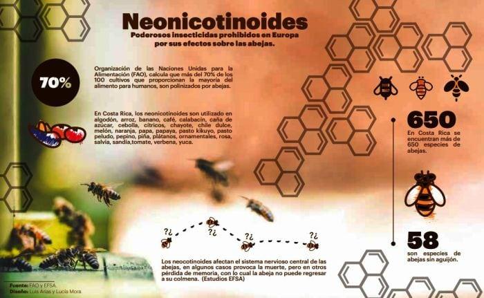 CSIC – Los insecticidas neonicotinoides pueden perjudicar a insectos beneficiosos a través de la mielada
